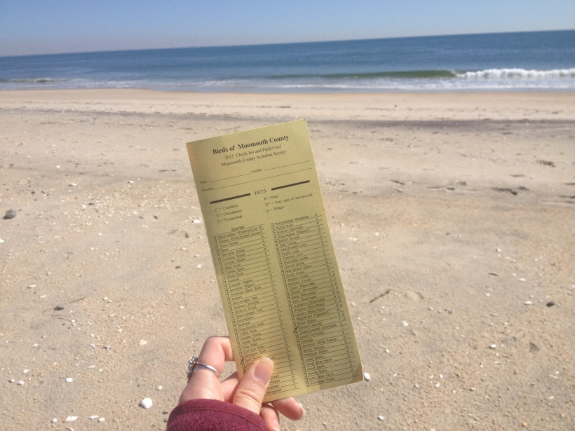 Birds of Monmouth County Checklist