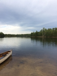Batsto Lake, kayaking with Pinelands Adventures