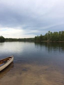Batsto Lake, kayaking with Pinelands Adventures