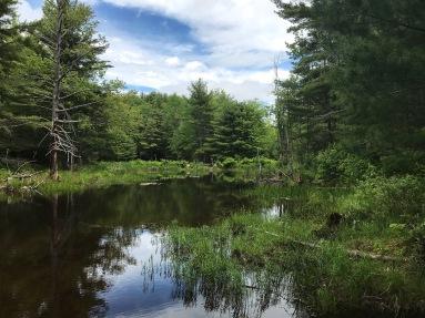 Hidden Valley Nature Center