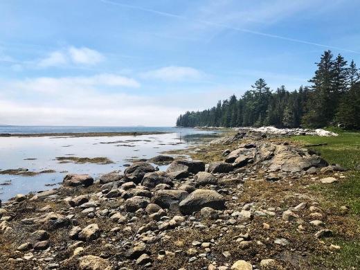 Exploring the inter-tidal zones
