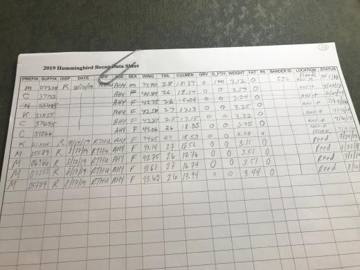 Resighting data sheet