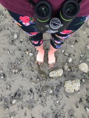 Getting muddy at Porthole Cove