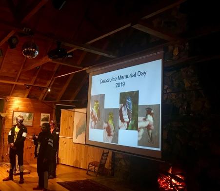 Sara's Dendroica Memorial Day poem